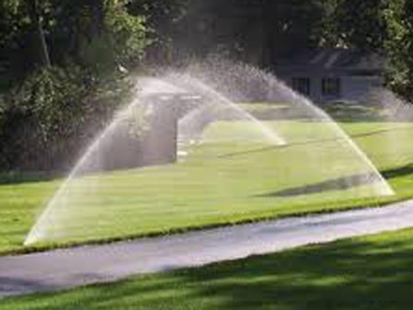 Irrigazione-a-goccia-orto-rimini